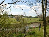 Meadow View Caravan Park