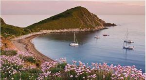 Image courtesy of Alamy - Worbarrow Bay, Dorset