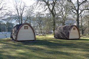 Great location for the campig pods