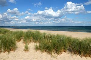 Studland Beach. Image: VisitEngland/Visit Dorset