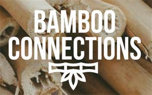 Bamboo Connections Ltd
