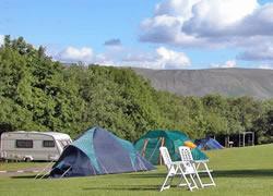 Cove Caravan & Camping Park