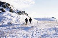 Enjoy a winter walk