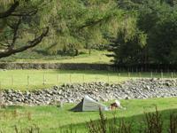 Gillercombe Campsite