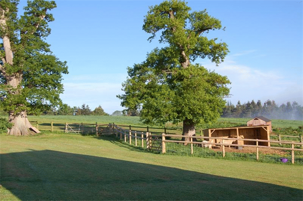 Huntstile Organic Farm