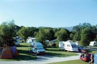 O'Donoghue's White Villa Farm Caravan & Camping Park