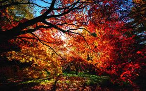 10 Awesome Autumn caravanning locations in the UK