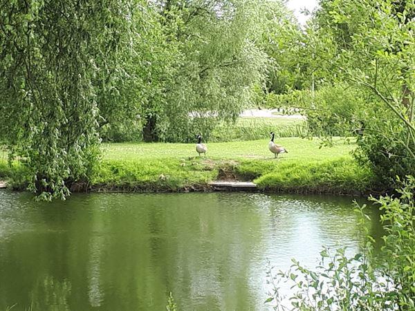 Barlings Country Park