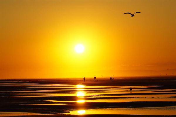 Steven Young Findhorn Beach