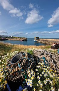 Image courtesy of Alamy - Craster To Low Newton, Northumberland