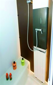 A panel radiator in the shiwer cubicle and a rail above it for towels to dry efficiently