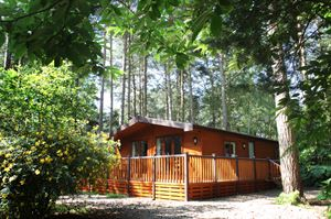 Woodland lodges can be hired