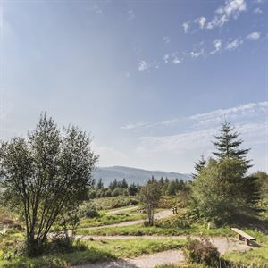 Achnabreac is one of the locations taking part in Forestry Scotland's Stay the Night Scheme (picture Forestry Scotland)