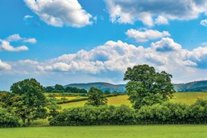 The views in the countryside surrounding  Llewelyn Park and Caerwnon Park