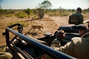 Big 5 game drive is one of the features of a new 38-day tour to southern Africa