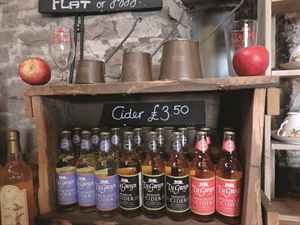 A weekend cider tour in Herefordshire