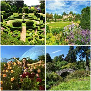 Fascinating gardens