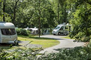 Coniston Park Coppice Caravan and Motorhome Club Site