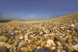 Dungeness reserve