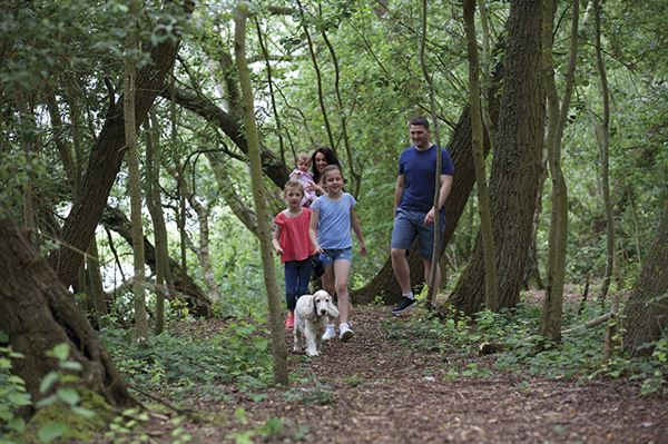 Getting back to nature as a family