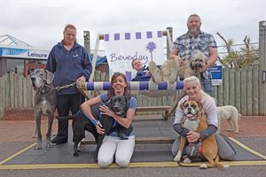 Some of the Beverley Holidays team with their dogs
