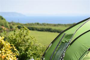 Heligan Camping & Caravan Estate