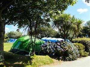 Hendra Holiday Park tents (Photo courtesy of Hendra Holiday Park)