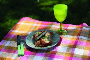 Cooking in a carqvan: Chicken Parmigiana