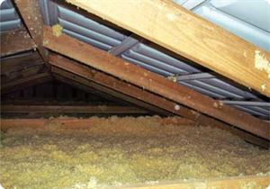 If your park home has loft space, insulating it has obvious benefits. Image: Park Home Insulations