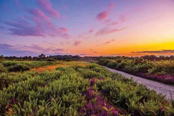 The stunning countryside around Kelling Heath