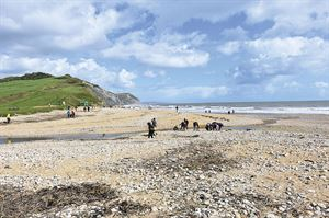Looking for fossils on Charmouth Beach