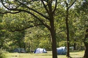 Low Wray Campsite ©National Trust Images/Paul Harris