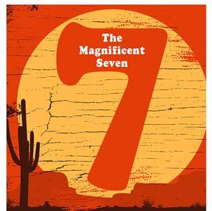 Don't miss Danbury's Magnificent 7 campervan sale