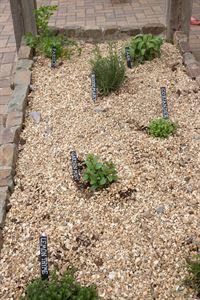 The site's herb garden