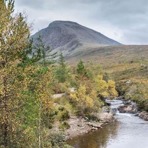 North Face is one of the locations taking part in Forestry Scotland's Stay the Night Scheme (picture Forestry Scotland)