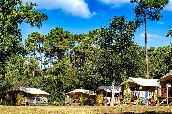 Camping La Palombière