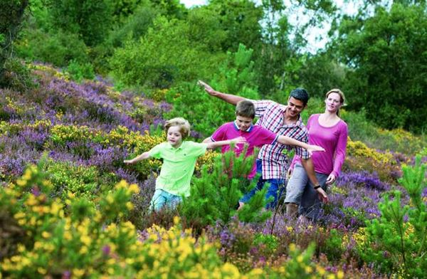 Photo courtesy of Kelling Heath Holiday Park
