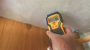 A damp meter can help detect problems early on