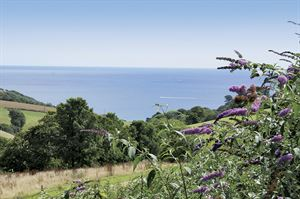 The view of the coast from Bridge Leisure's Seaview Holiday Village in Cornwall