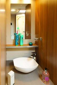 The washbasin is in an alcove in the spacious shower room