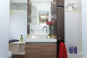 Plenty of lighting around the mirror and a pull-out towel rail