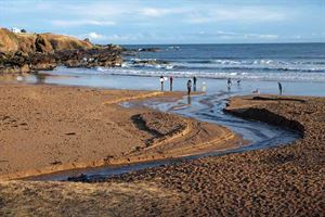 Coldingham Bay beach in December