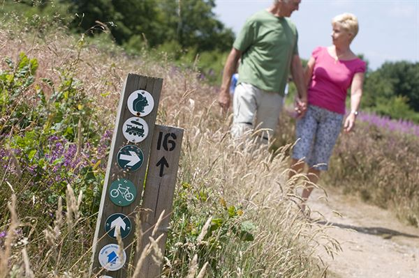 Walking at Kelling Heath