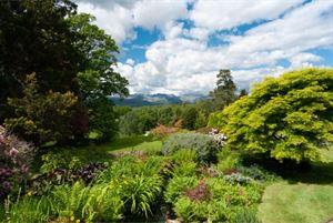 Garden inspiration, anyone?
