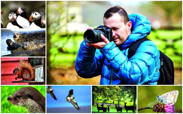 Matty Graham reveals great places to see and photograph wildlife in the UK