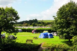 Harford Bridge Holiday Park