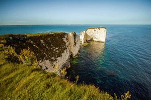 Dorset has some fantastic beaches