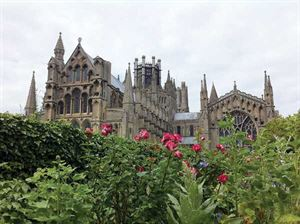 Bedwell Park, owned by the Tingdene Parks group, is just two-and-a-half miles from Ely