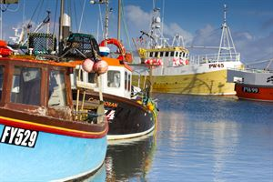 The harbour at nearvy Padstow