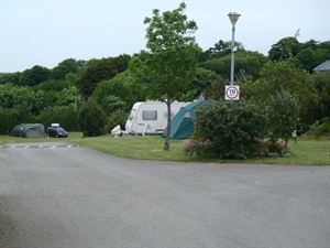 Shrubs and trees planted around the campsite give a private feel to some pitches